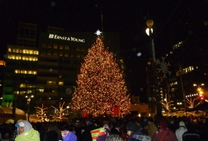 The Norway spruce that once grew at Kettunen Center stands proudly as the main attraction at of the Detroit Christmas Tree Lighting Ceremony and Winter Magic-Detroit during the Christmas 2011 season. Photo credit: Jill O'Donnell
