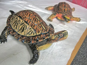 "These lifelike sculptures by Mark Muhich are part of the MSU Museum exhibit ""Turtles in Trouble."""