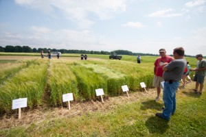 Visitors to the Upper Peninsula Research and Extension Center (UPREC) Field Day visit in front of the research plots