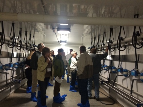State council members tour below the milking parlor where the machines send the milk.