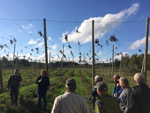State Council members stand in a hops field and listen to Erin Lizotte talk about Michigan hops.