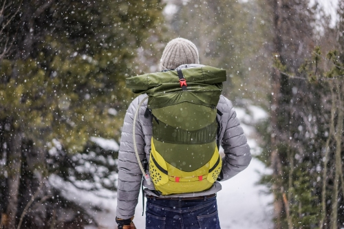 Person hiking on a path in the woods in the snow.