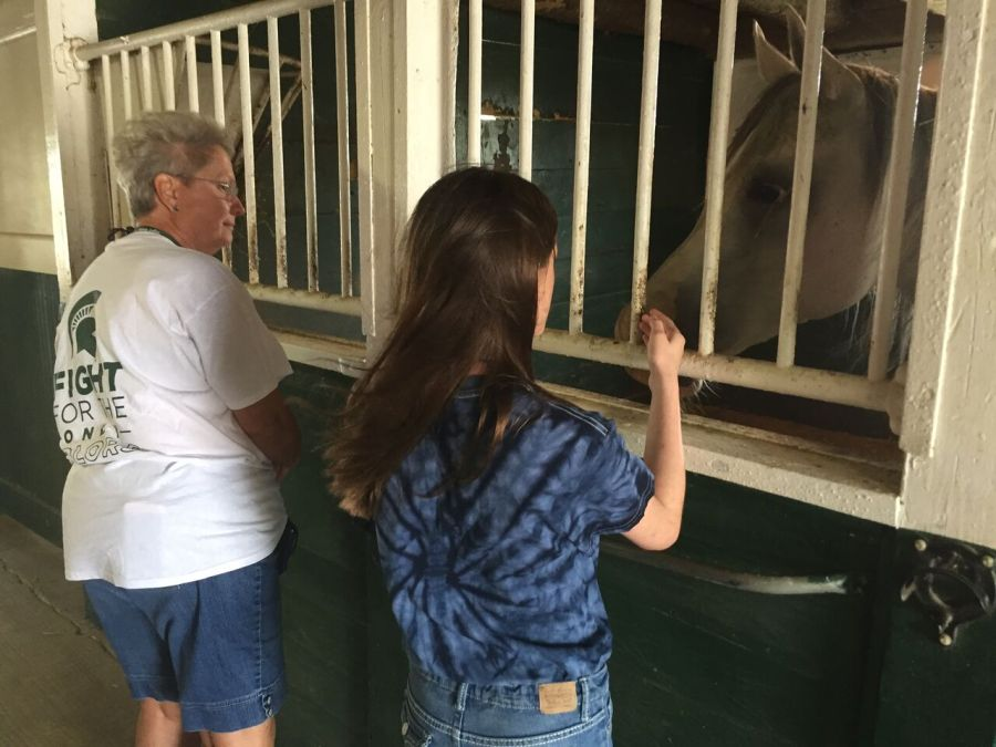 A grandmother and granddaughter pet a horse.