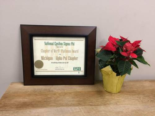 ESP Award Plaque Sits next to a poinsetta on a shelf in the Director's Office.