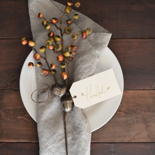 "Cloth napkin with acorn tree napkin holder and a card that says ""Thankful."""