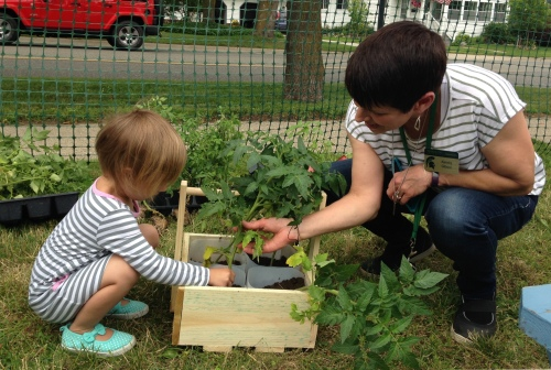 MSU Extension staff member holds a plant in a garden box as small child touches it.